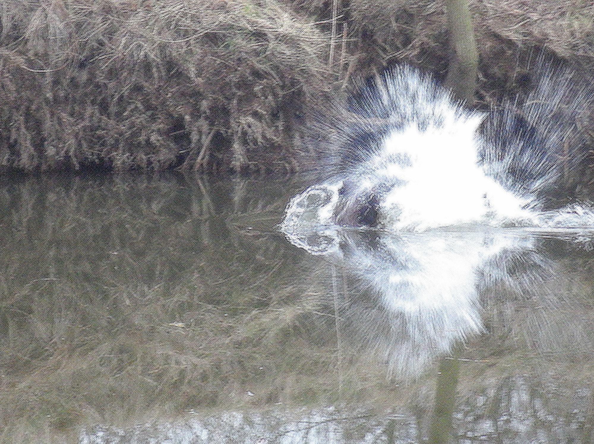 Radbuza Chobotnice bobr